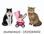 There Is A Cat Family. The Pin...