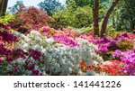 A Colourful Border Display Wit...