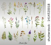 set of colored meadow herbs and ... | Shutterstock .eps vector #1414520018