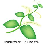 a flower  sometimes known as a... | Shutterstock .eps vector #141455596