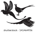 the figure shows a bird pheasant - stock vector