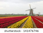 A Typical Dutch Composition Of...