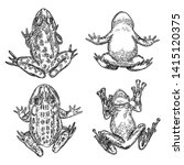 set of frog line illustration.  ... | Shutterstock .eps vector #1415120375