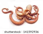 octopus on white background | Shutterstock . vector #141592936