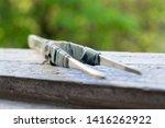 metal old tweezers on a wooden... | Shutterstock . vector #1416262922