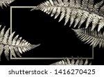 silver fern leaves on a black...   Shutterstock . vector #1416270425