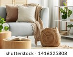 Beige Cushions On Gray Couch I...