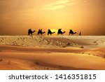 Desert Adventure With Camels...
