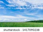 Field View  Sky  Clouds....