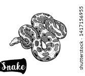 hand drawn sketch style python... | Shutterstock .eps vector #1417156955