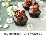 Tasty Chocolate Cupcakes With...