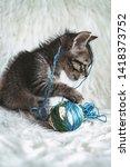 domestic kitten on white shaggy ... | Shutterstock . vector #1418373752
