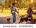 Stock photo professional dog walker happy group of dogs with couple dog walker enjoying in walk city 1418502962