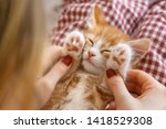 Stock photo caucasian girl play with ginger kitty female stroking the little paws of the pet little handsome 1418529308