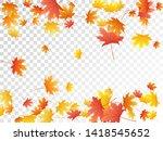 maple leaves vector  autumn... | Shutterstock .eps vector #1418545652