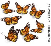 Vector Orange Butterflies...