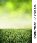 natural background | Shutterstock . vector #141906526