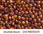 close up of red quinoa seeds... | Shutterstock . vector #1419805655