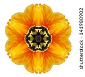 flower mandala isolated on...   Shutterstock . vector #141980902