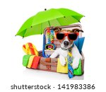 Summer Vacation Dog In Bag Ful...