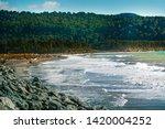 bruce bay beach southland new... | Shutterstock . vector #1420004252