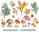 Forest Set With Fly Agaric...