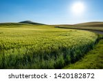 rural countryside in italy... | Shutterstock . vector #1420182872