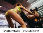 gym. girl fears sportsmena who...   Shutterstock . vector #1420335845