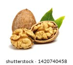 walnuts with leaves isolated on ...   Shutterstock . vector #1420740458