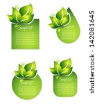 fresh leafs templates. various... | Shutterstock .eps vector #142081645
