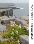 Small photo of Irish landscape - view from Dun Aengus, an ancient fort on Aran Islands, Ireland