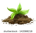 plant with green leaves growing ... | Shutterstock .eps vector #142088218