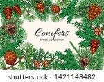 pine tree cone frame... | Shutterstock .eps vector #1421148482