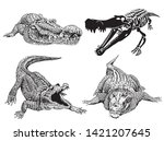 graphical set of crocodiles...   Shutterstock .eps vector #1421207645