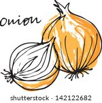 fresh onion whole   sliced... | Shutterstock .eps vector #142122682