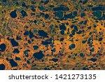abstract marbling art patterns... | Shutterstock . vector #1421273135