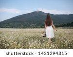 beautiful woman with long...   Shutterstock . vector #1421294315