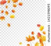 maple leaves vector  autumn... | Shutterstock .eps vector #1421598095