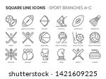 sport branches related  square... | Shutterstock .eps vector #1421609225