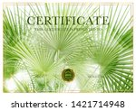 certificate with green palm...   Shutterstock . vector #1421714948