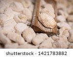 cook homemade gnocchi on the... | Shutterstock . vector #1421783882
