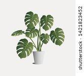 tropical leaves monstera vector ... | Shutterstock .eps vector #1421823452