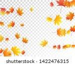 maple leaves vector  autumn... | Shutterstock .eps vector #1422476315
