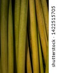 green plant stalks. stems of...