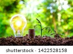 growing trees and bulbs on the... | Shutterstock . vector #1422528158