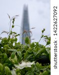 london uk  june 2019. view from ... | Shutterstock . vector #1422627092