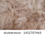 Brown Rabbit Fur Texture ...