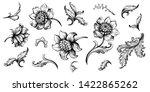 flower vintage scroll baroque... | Shutterstock .eps vector #1422865262