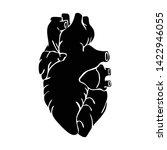 illustration of the heart organ ...