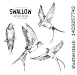 Sketch of a flying swallow. Hand drawn illustration converted to vector
